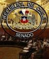 Seminario sobre derecho a voto en el Senado, Santiago